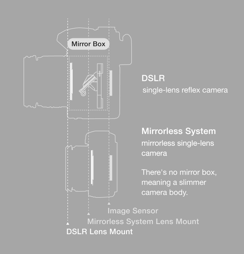 Mirrorless System mirrorless single-lens camera Mirrorless System There's no mirror box, meaning a slimmer camera body. Image Sensor Mirrorless System Lens Mount DSLR Lens Mount