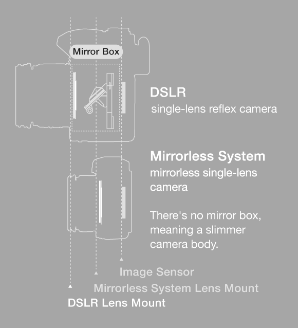 35-mm lens Micro Four Thirds system lens Almost the half lens size for equivalent brightness and the same angle of view